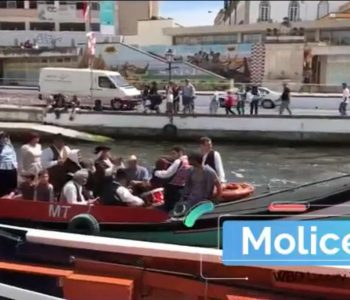 Sabe o que é moliceiro? - West Blue Dreams Porto Luxury Tours Portugal
