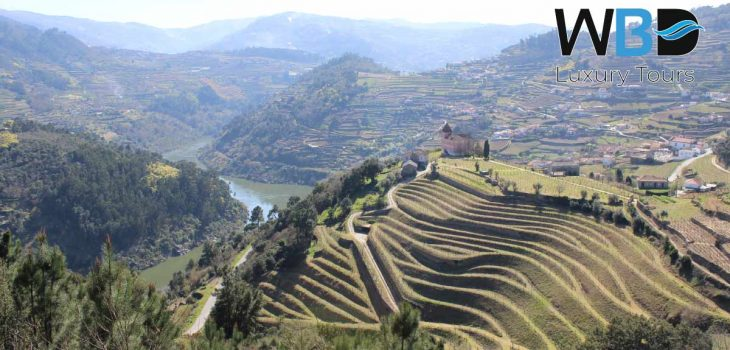 One of the most beautiful regions of the Douro, Resende cherry land - West Blue Dreams Porto Luxury Tours Portugal
