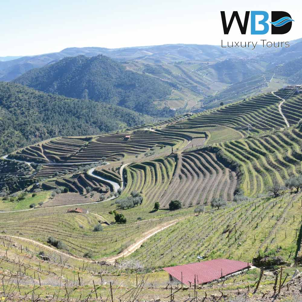 The Tua Valley is part of the Alto Douro Wine Region 2