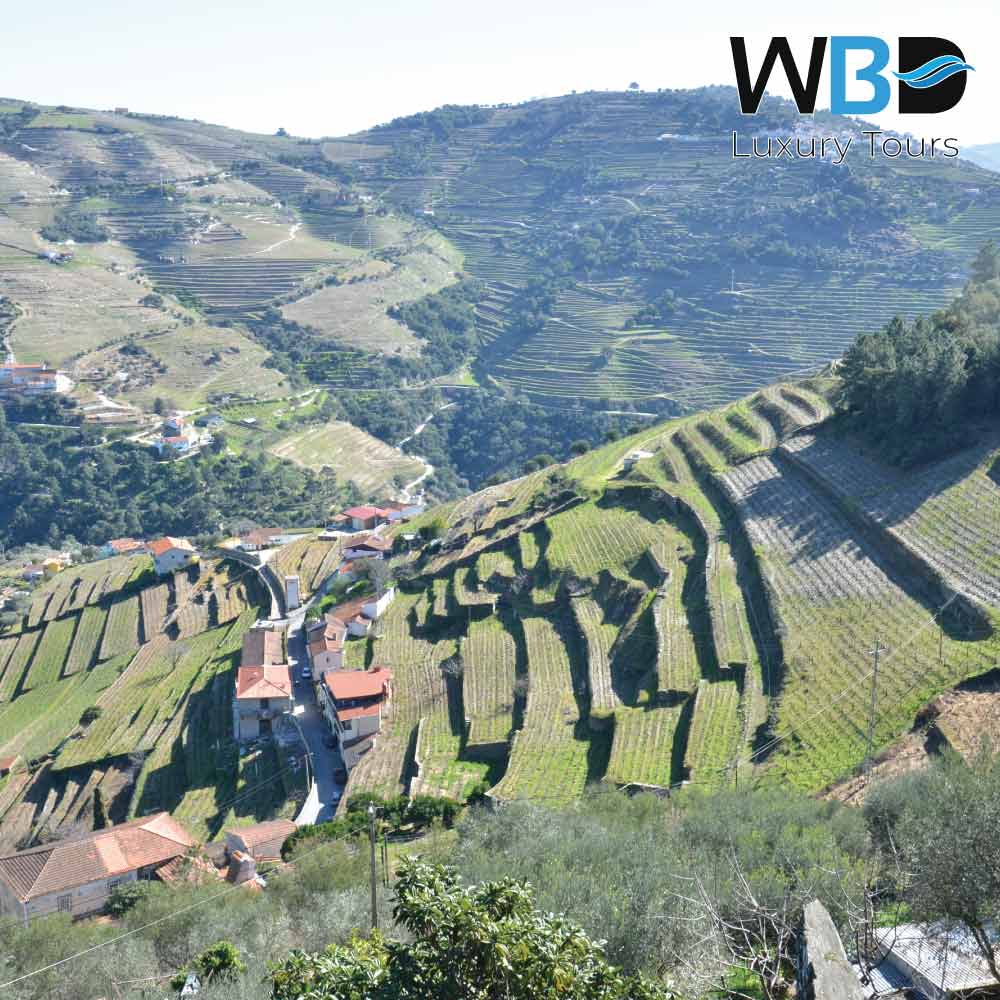 The Tua Valley is part of the Alto Douro Wine Region 1