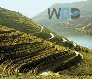 10 locais mais bonitos do Douro - WBD Tailored Tours
